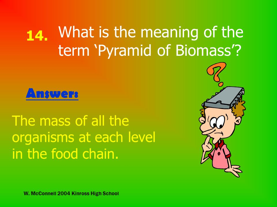 W. McConnell 2004 Kinross High School 14. What is the meaning of the term 'Pyramid of Biomass'.