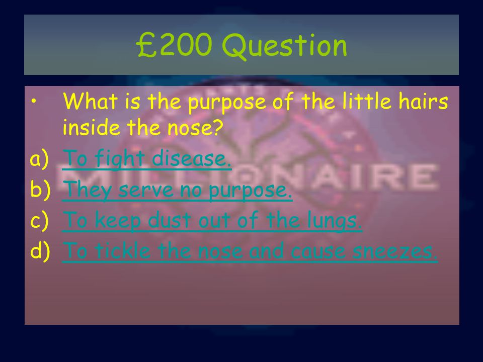 £200 Question What is the purpose of the little hairs inside the nose.