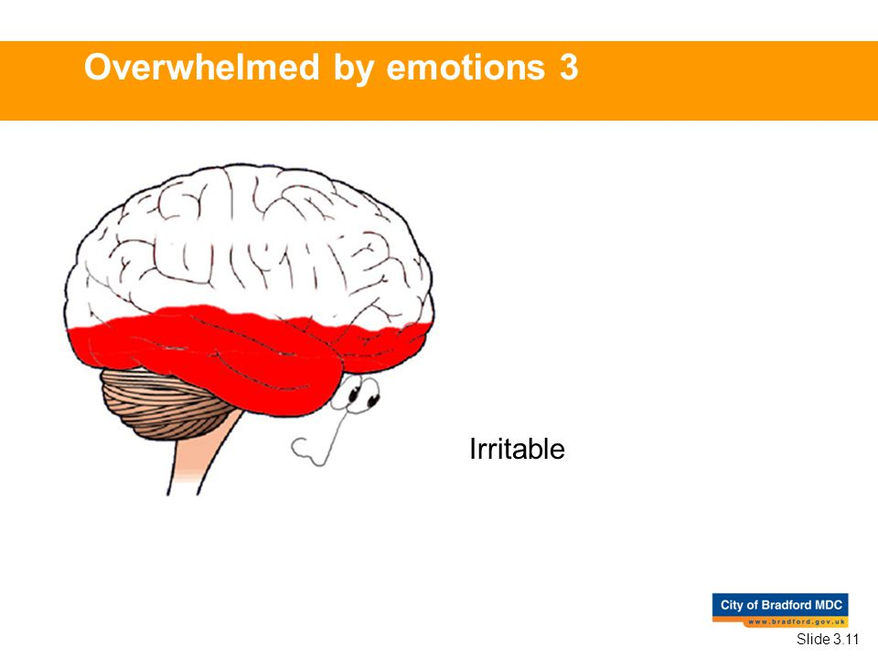 Irritable Overwhelmed by emotions 3 Slide 3.11
