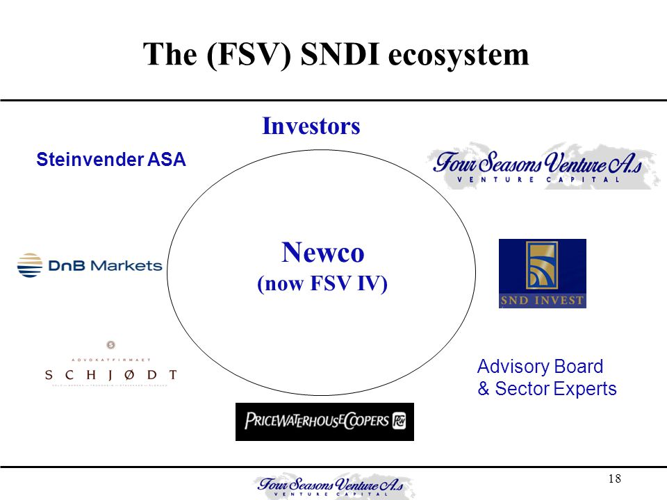 18 Steinvender ASA Investors Advisory Board & Sector Experts Newco (now FSV IV) The (FSV) SNDI ecosystem