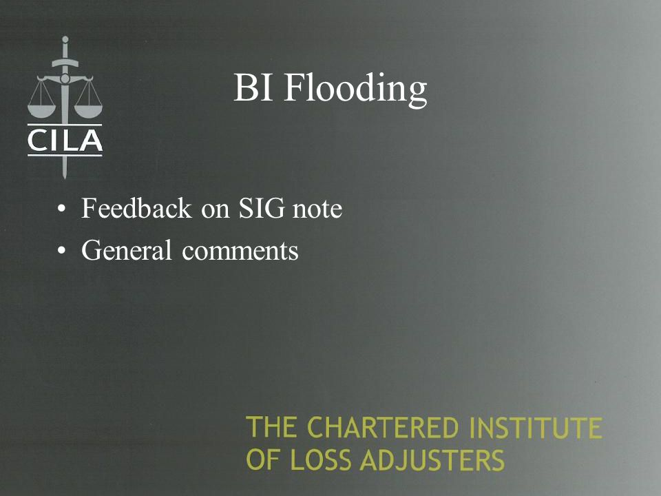 BI Flooding Feedback on SIG note General comments