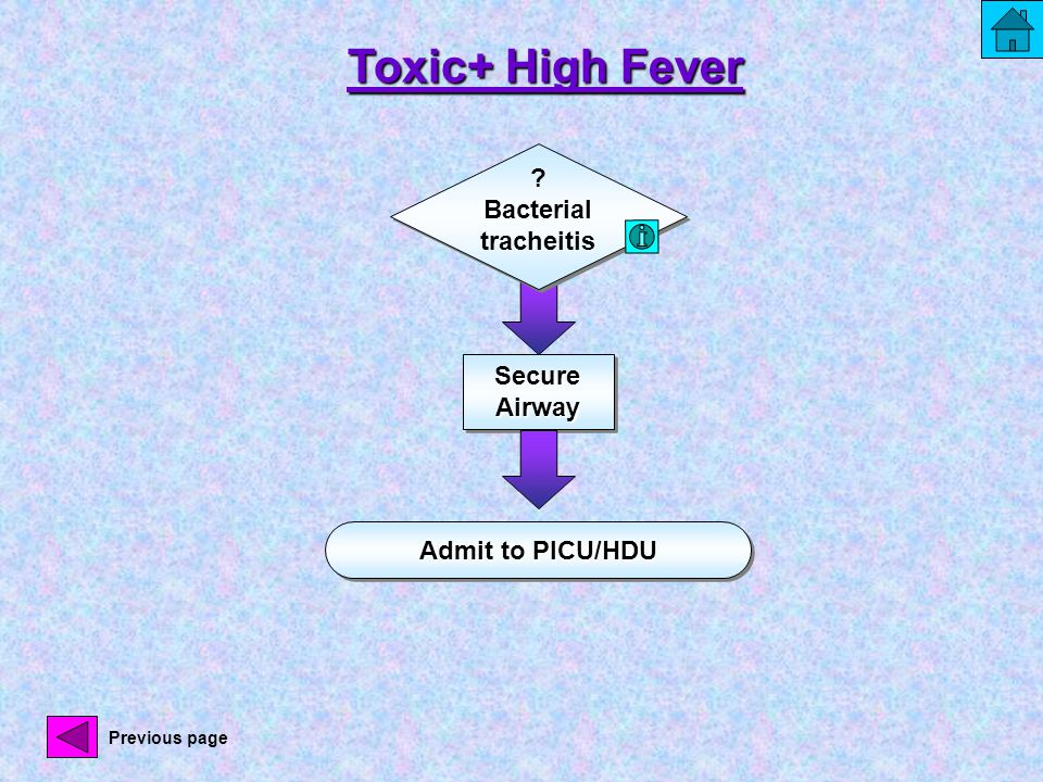 Secure Airway Admit to PICU/HDU ? Bacterial tracheitis Toxic+ High Fever Previous page