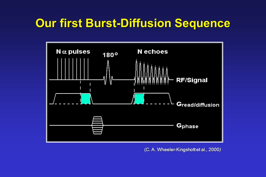 Excitation/readout gradient = diffusion gradient Excitation/readout gradient = diffusion gradient  transverse magnetisation dephases during exitation, rephases during readout  dephasing = rephasing due to diffusion motion Stepped phase-encoding gradient  diffusion gradient Stepped phase-encoding gradient  diffusion gradient M repetitions of the sequence M repetitions of the sequence Main Components of the Burst-Diffusion Sequence