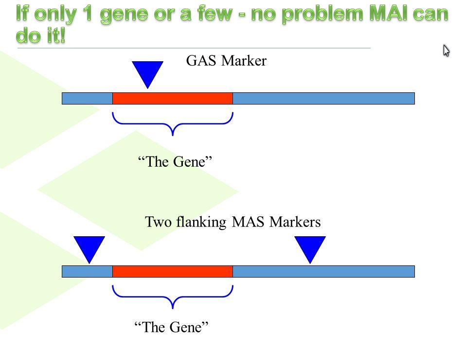 15 M1M2 M3 M4M5 M6 M7 Chromosome Probability M9 M2 M5