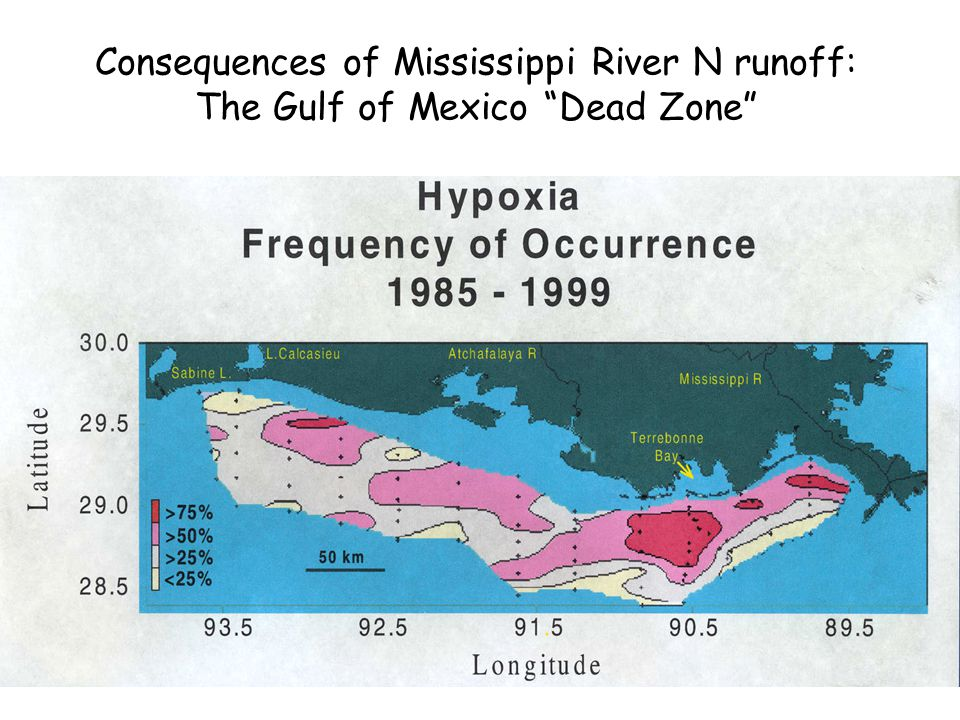 Consequences of Mississippi River N runoff: The Gulf of Mexico Dead Zone