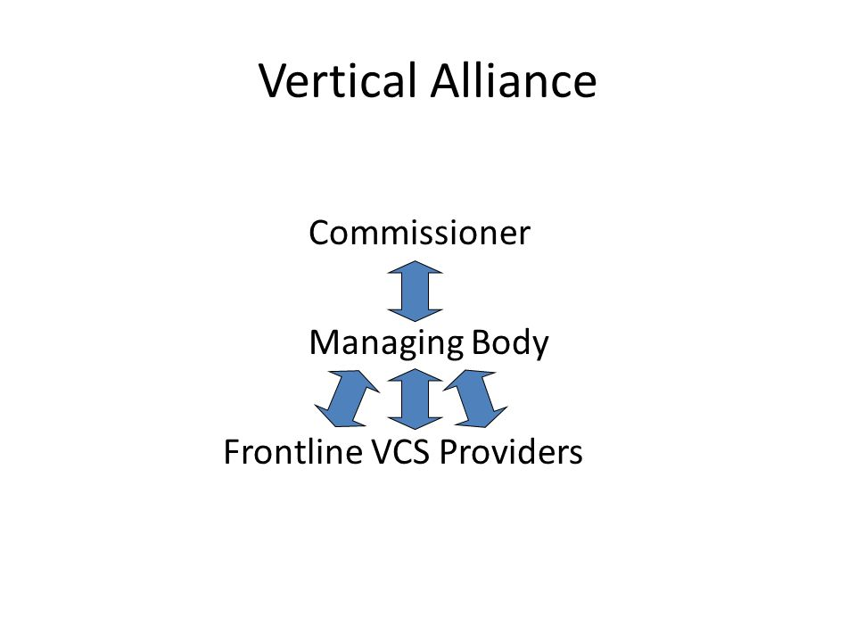 Vertical Alliance Commissioner Managing Body Frontline VCS Providers