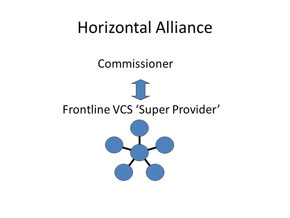 Benefits of a horizontal model Grass roots ownership and 'buy-in' Level playing field – mutualism, co-operation Peer-to-peer mentoring/capacity building Shared risk and reward Creating a step change in VCS delivery capability