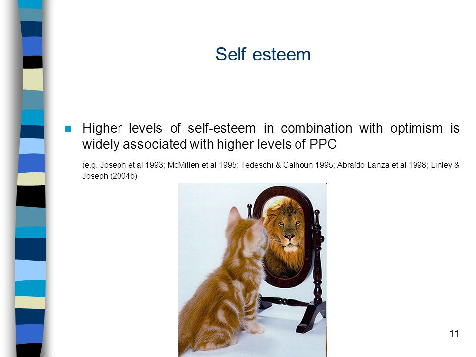 11 Self esteem Higher levels of self-esteem in combination with optimism is widely associated with higher levels of PPC (e.g.