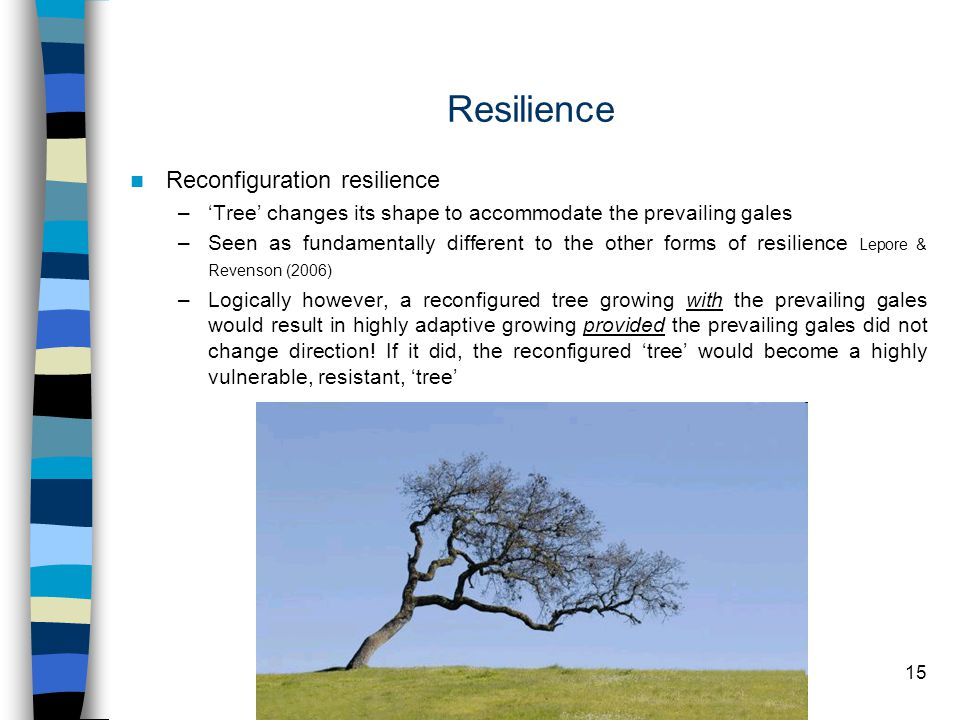 15 Resilience Reconfiguration resilience –'Tree' changes its shape to accommodate the prevailing gales –Seen as fundamentally different to the other forms of resilience Lepore & Revenson (2006) –Logically however, a reconfigured tree growing with the prevailing gales would result in highly adaptive growing provided the prevailing gales did not change direction.