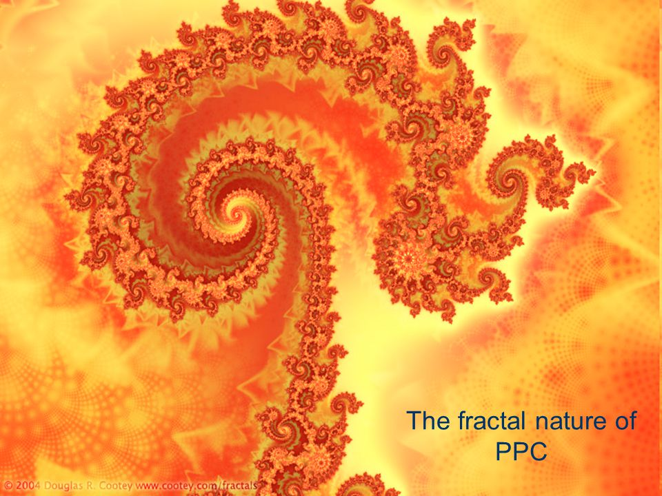 3 The fractal nature of PPC