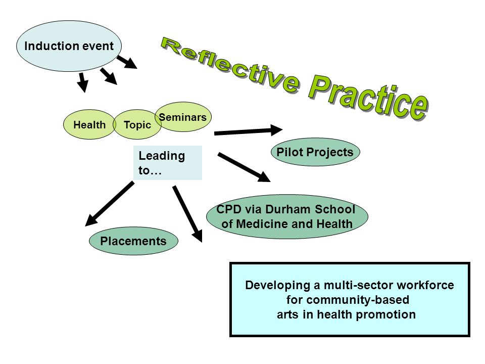 Induction event Developing a multi-sector workforce for community-based arts in health promotion HealthTopic Seminars Leading to… Pilot Projects CPD via Durham School of Medicine and Health Placements