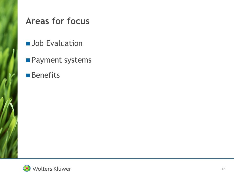17 Areas for focus Job Evaluation Payment systems Benefits