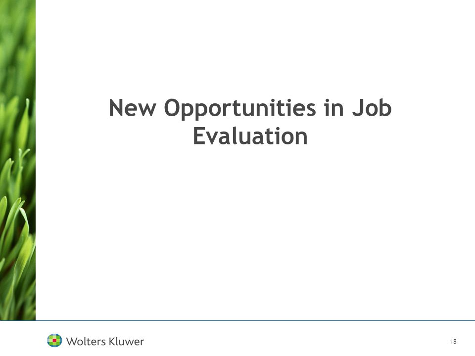 18 New Opportunities in Job Evaluation