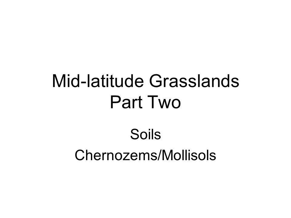 Mid-latitude Grasslands Part Two Soils Chernozems/Mollisols