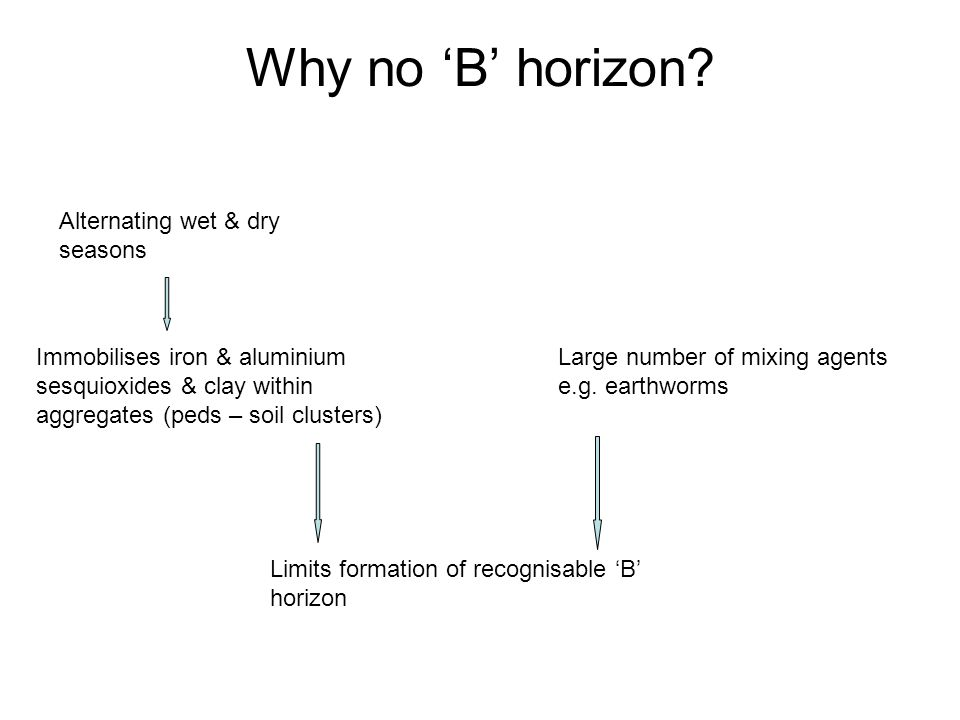 Why no 'B' horizon? Alternating wet & dry seasons Immobilises iron & aluminium sesquioxides & clay within aggregates (peds – soil clusters) Large numb