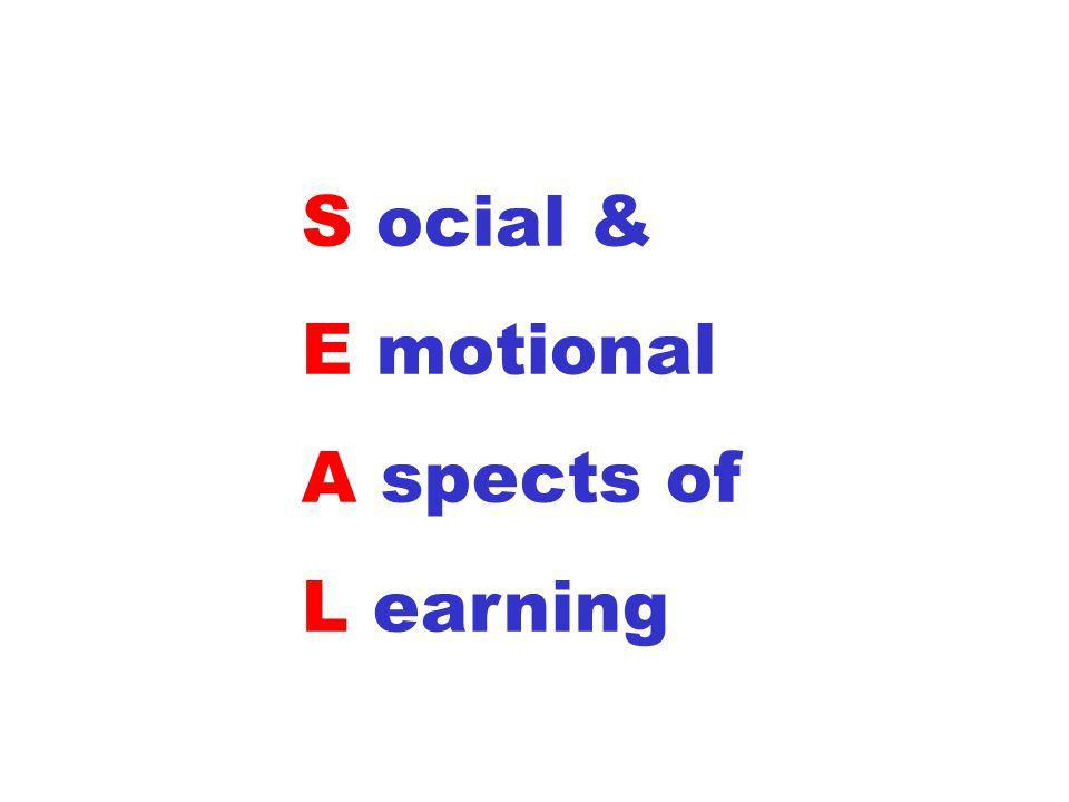 S ocial & E motional A spects of L earning