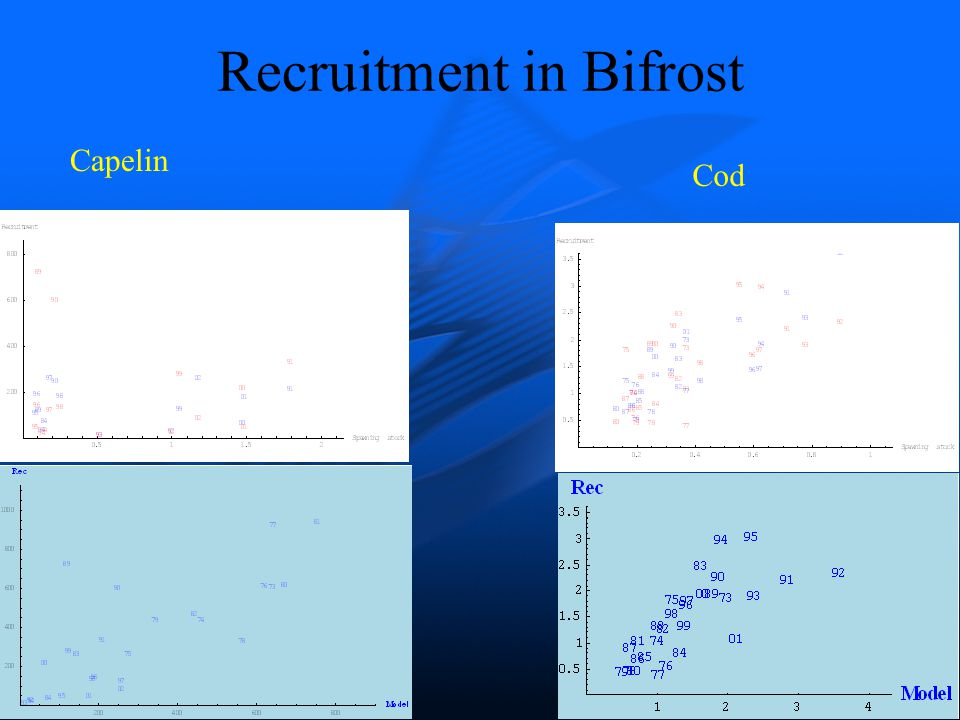 Recruitment in Bifrost Capelin Cod
