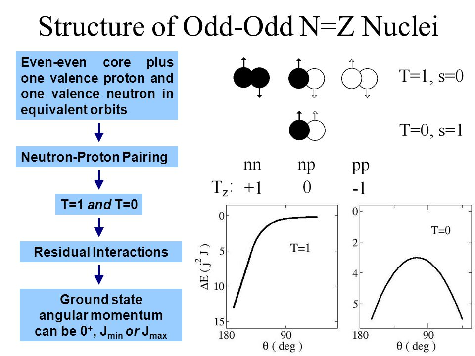 Structure of Odd-Odd N=Z Nuclei Even-even core plus one valence proton and one valence neutron in equivalent orbits Neutron-Proton PairingT=1 and T=0Residual InteractionsGround state angular momentum can be 0 +, J min or J max