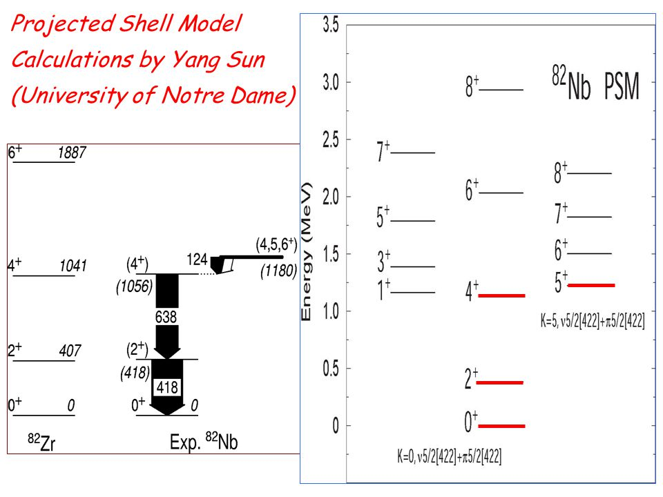 Projected Shell Model Calculations by Yang Sun (University of Notre Dame)
