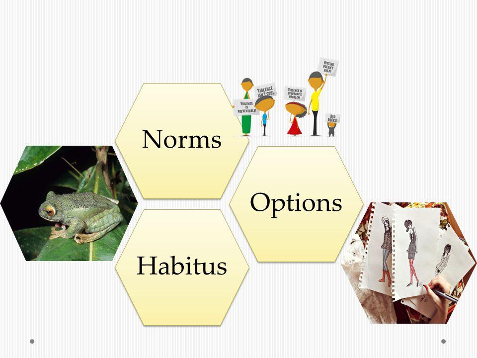 HabitusOptionsNorms