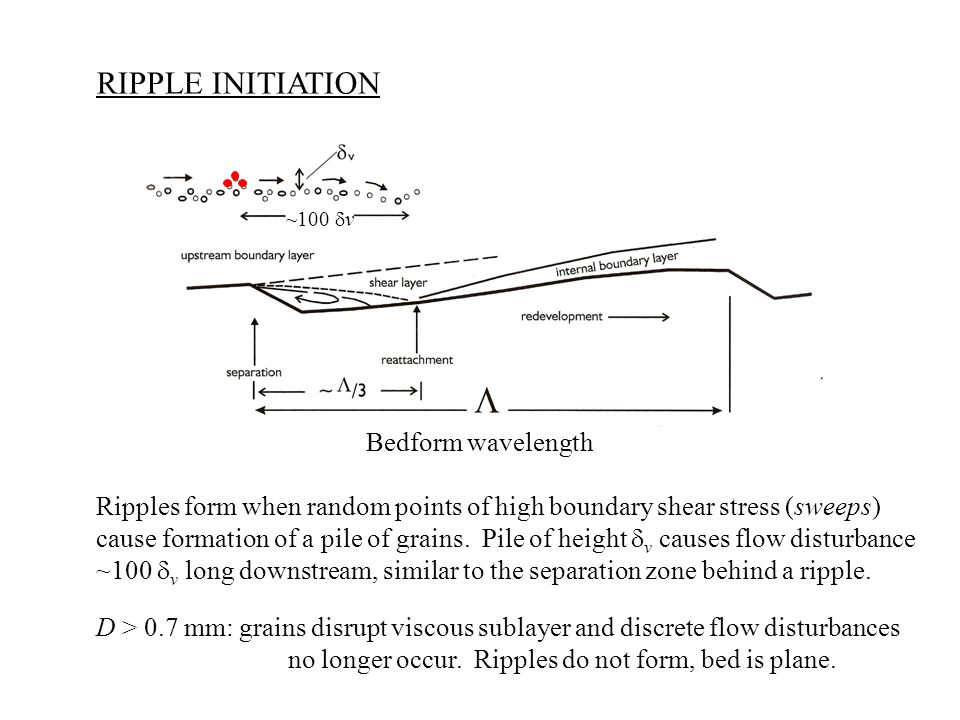 RIPPLE INITIATION Ripples form when random points of high boundary shear stress (sweeps) cause formation of a pile of grains.