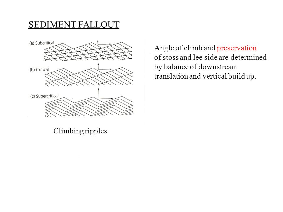 SEDIMENT FALLOUT Climbing ripples Angle of climb and preservation of stoss and lee side are determined by balance of downstream translation and vertical build up.