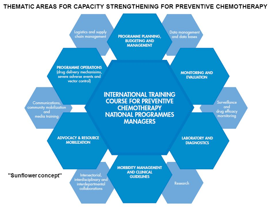 THEMATIC AREAS FOR CAPACITY STRENGTHENING FOR PREVENTIVE CHEMOTHERAPY Sunflower concept