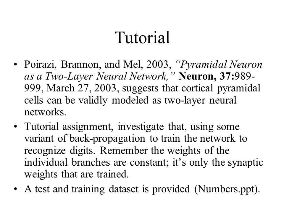 Tutorial Poirazi, Brannon, and Mel, 2003, Pyramidal Neuron as a Two-Layer Neural Network, Neuron, 37: , March 27, 2003, suggests that cortical pyramidal cells can be validly modeled as two-layer neural networks.