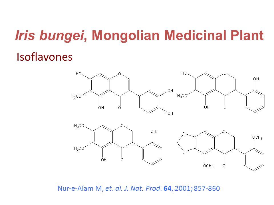 Iris bungei, Mongolian Medicinal Plant Isoflavones Nur-e-Alam M, et.