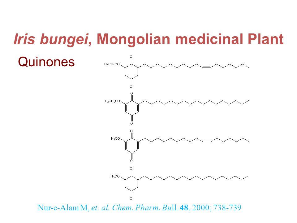 Iris bungei, Mongolian medicinal Plant Quinones Nur-e-Alam M, et.