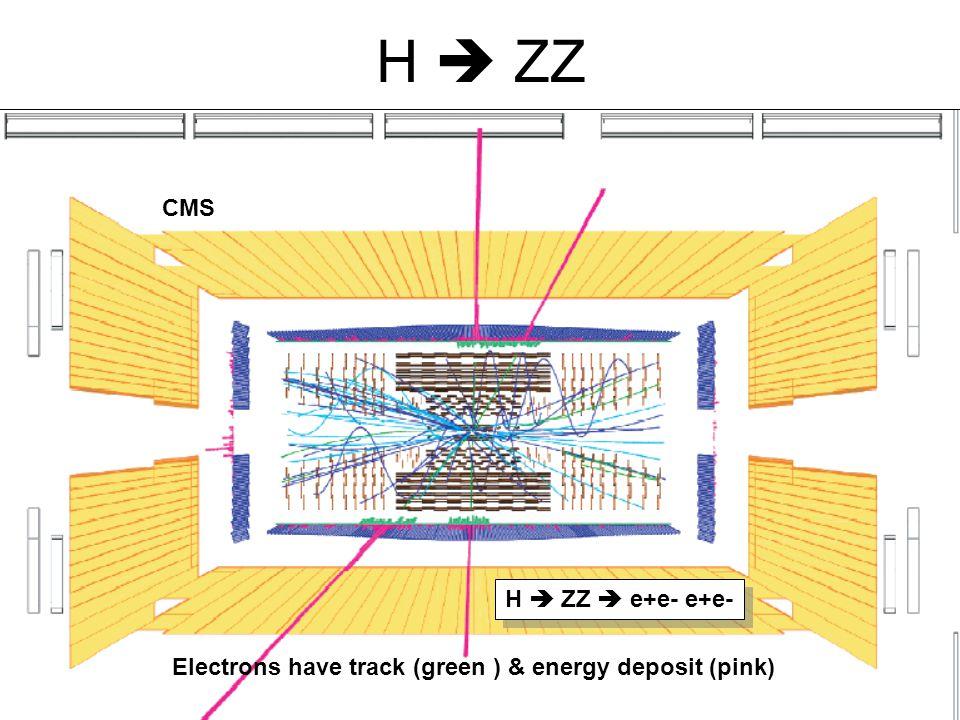 H  ZZ H  ZZ  e+e- e+e- CMS Electrons have track (green ) & energy deposit (pink)