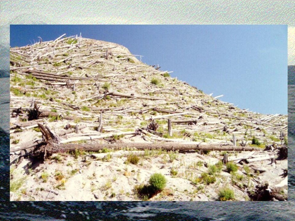 Views of Mt St Helens