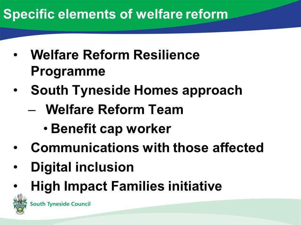 Welfare Reform Resilience Programme South Tyneside Homes approach –Welfare Reform Team Benefit cap worker Communications with those affected Digital inclusion High Impact Families initiative Specific elements of welfare reform