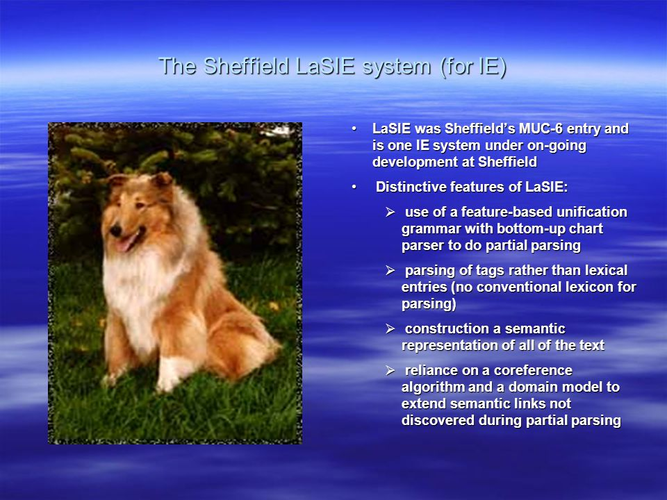 The Sheffield LaSIE system (for IE) LaSIE was Sheffield's MUC-6 entry and is one IE system under on-going development at Sheffield Distinctive features of LaSIE:  use of a feature-based unification grammar with bottom-up chart parser to do partial parsing  parsing of tags rather than lexical entries (no conventional lexicon for parsing)  construction a semantic representation of all of the text  reliance on a coreference algorithm and a domain model to extend semantic links not discovered during partial parsing