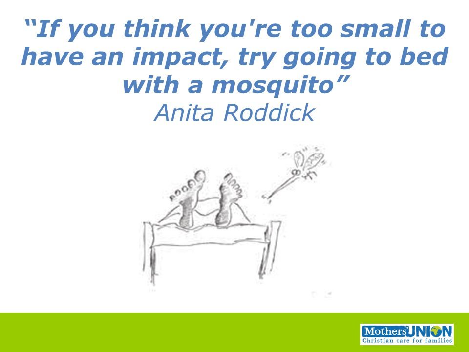 """If you think you're too small to have an impact, try going to bed with a mosquito"" Anita Roddick"