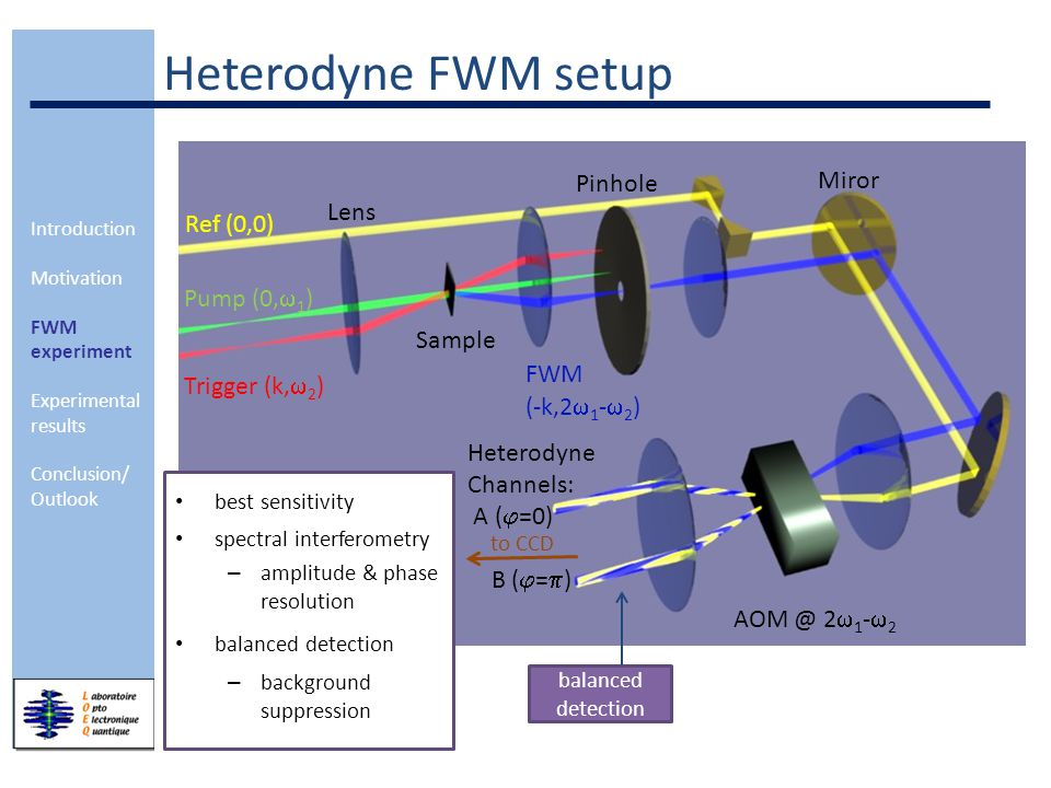Introduction Motivation FWM experiment Experimental results Conclusion/ Outlook Heterodyne FWM setup balanced detection best sensitivity spectral interferometry – amplitude & phase resolution balanced detection – background suppression Ref (0,0) Pump (0,  1 ) Trigger (k,  2 ) FWM (-k,2  1 -  2 ) Sample AOM @ 2  1 -  2 Heterodyne Channels: A (  =0) B (  =  ) Lens Pinhole Miror to CCD