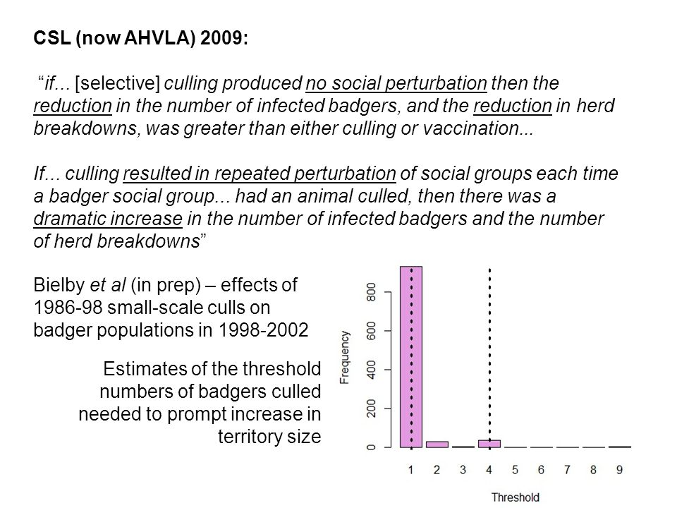 """CSL (now AHVLA) 2009: """"if... [selective] culling produced no social perturbation then the reduction in the number of infected badgers, and the reducti"""