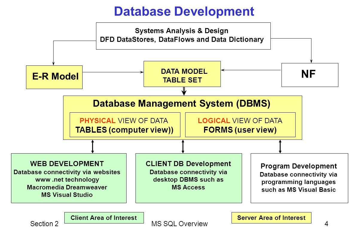 Section 2MS SQL Overview4 E-R Model NF Systems Analysis & Design DFD DataStores, DataFlows and Data Dictionary Database Management System (DBMS) PHYSI