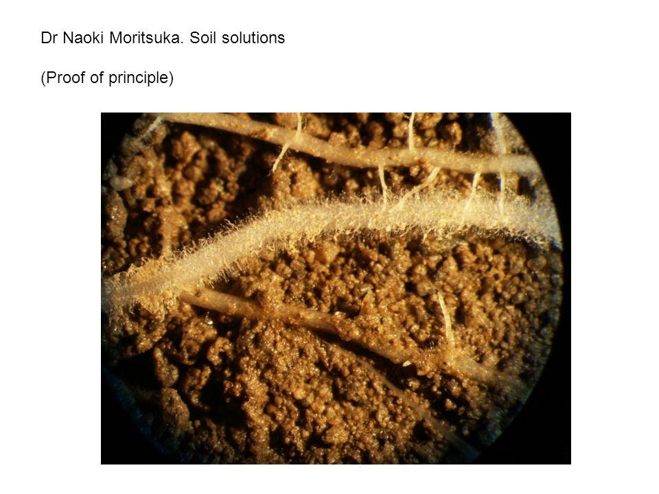 Dr Naoki Moritsuka. Soil solutions (Proof of principle)