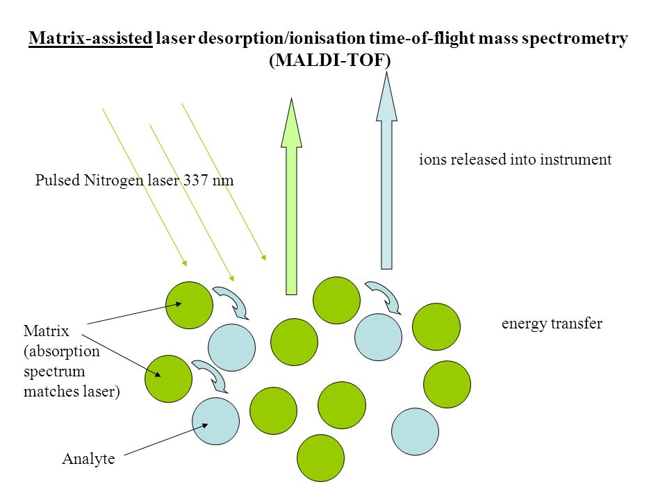 Pulsed Nitrogen laser 337 nm Matrix-assisted laser desorption/ionisation time-of-flight mass spectrometry (MALDI-TOF) Matrix (absorption spectrum matc