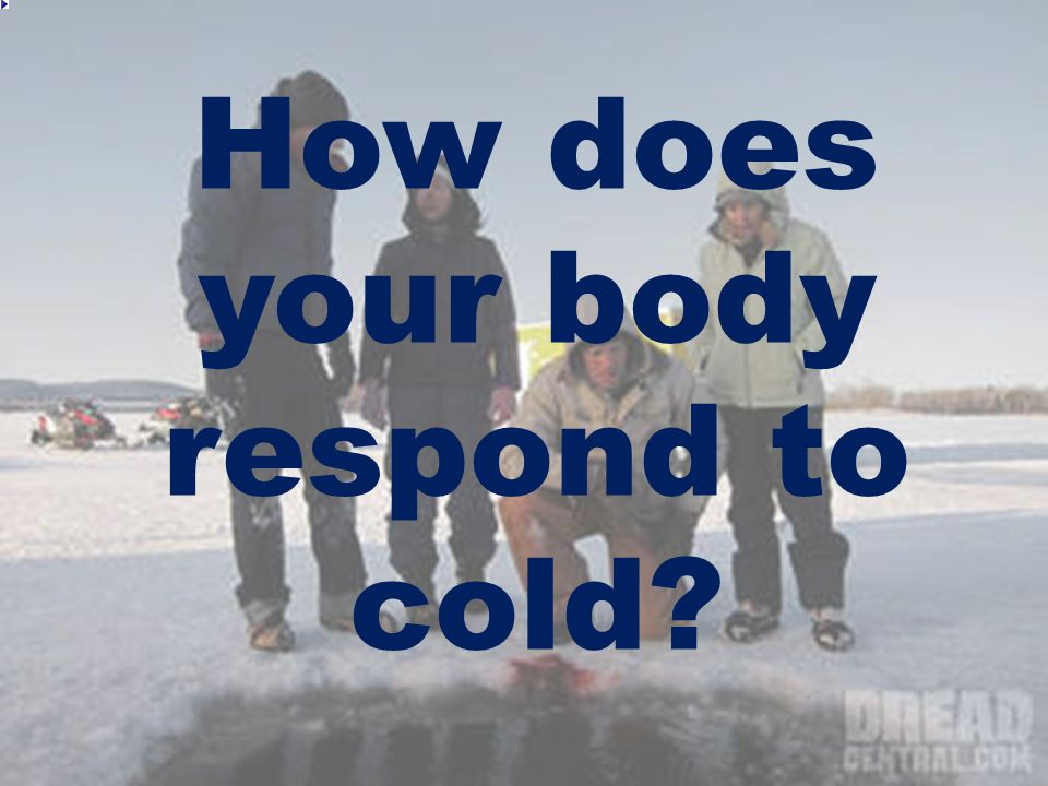 Stage 1: The Cold Response The body's normal response to a cold challenge: – Blood is shunted from the periphery (e.g.