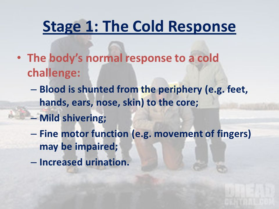 SEVERE HYPOTHERMIA Treatment No food/drink if unconscious Reduce further heat loss.