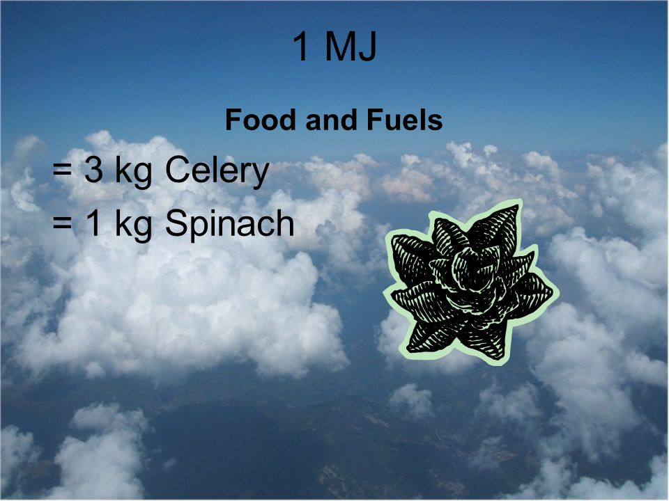 1 MJ Food and Fuels = 3 kg Celery