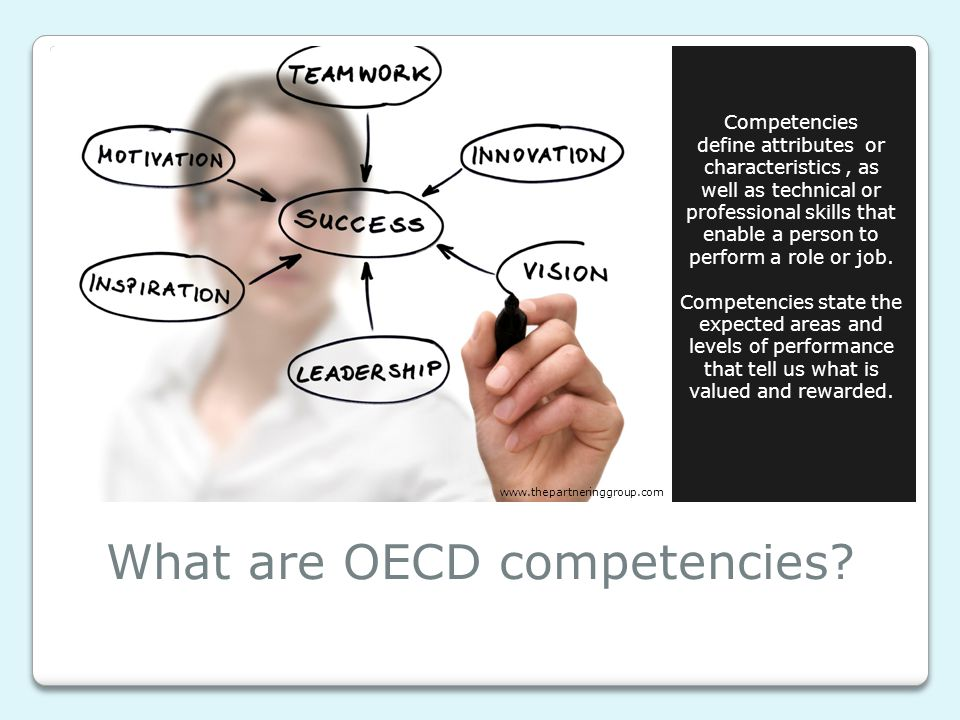 What are OECD competencies.