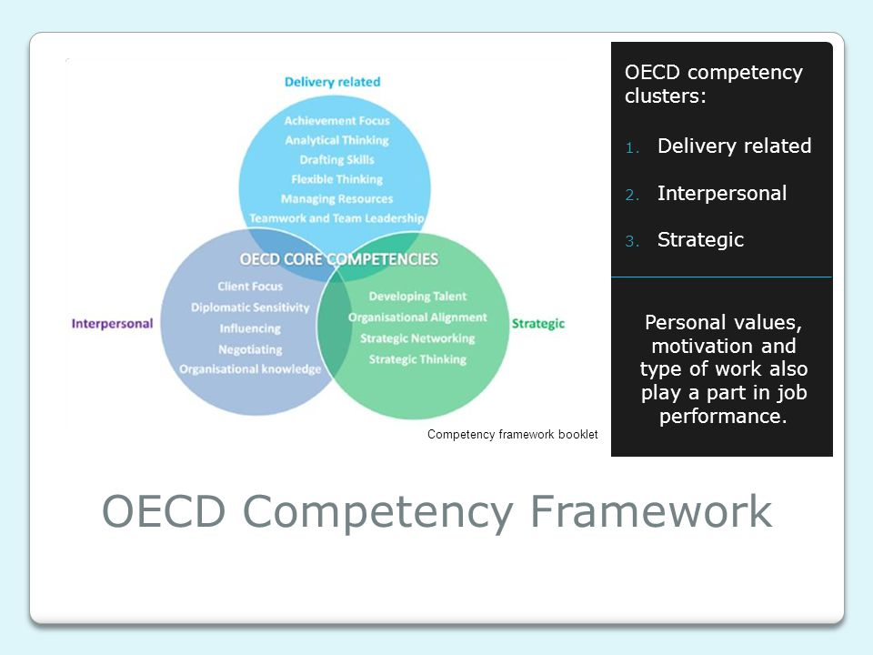 OECD Competency Framework OECD competency clusters: 1. Delivery related 2. Interpersonal 3. Strategic Personal values, motivation and type of work als
