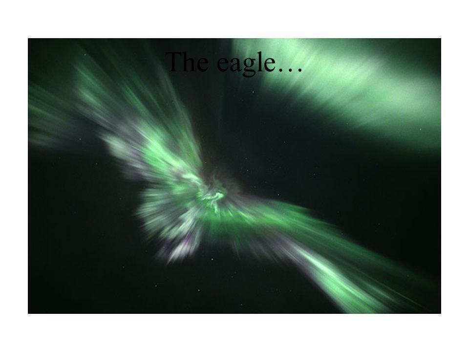 The eagle…