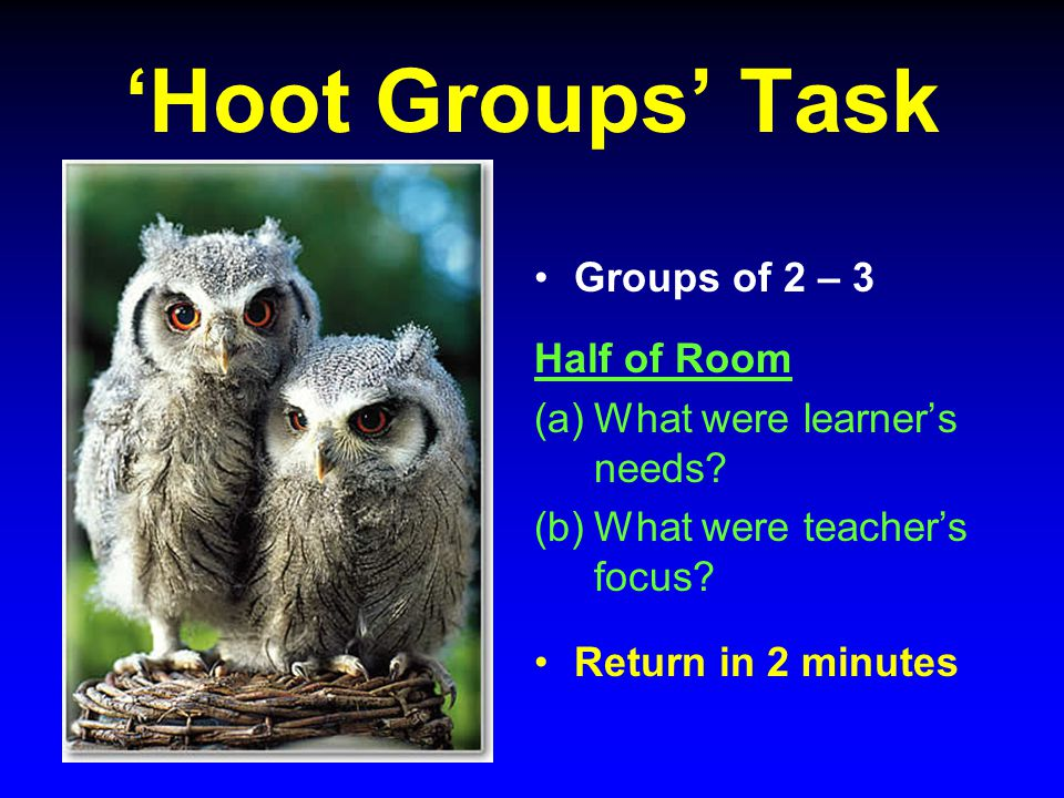 'Hoot Groups' Task Groups of 2 – 3 Half of Room (a)What were learner's needs.