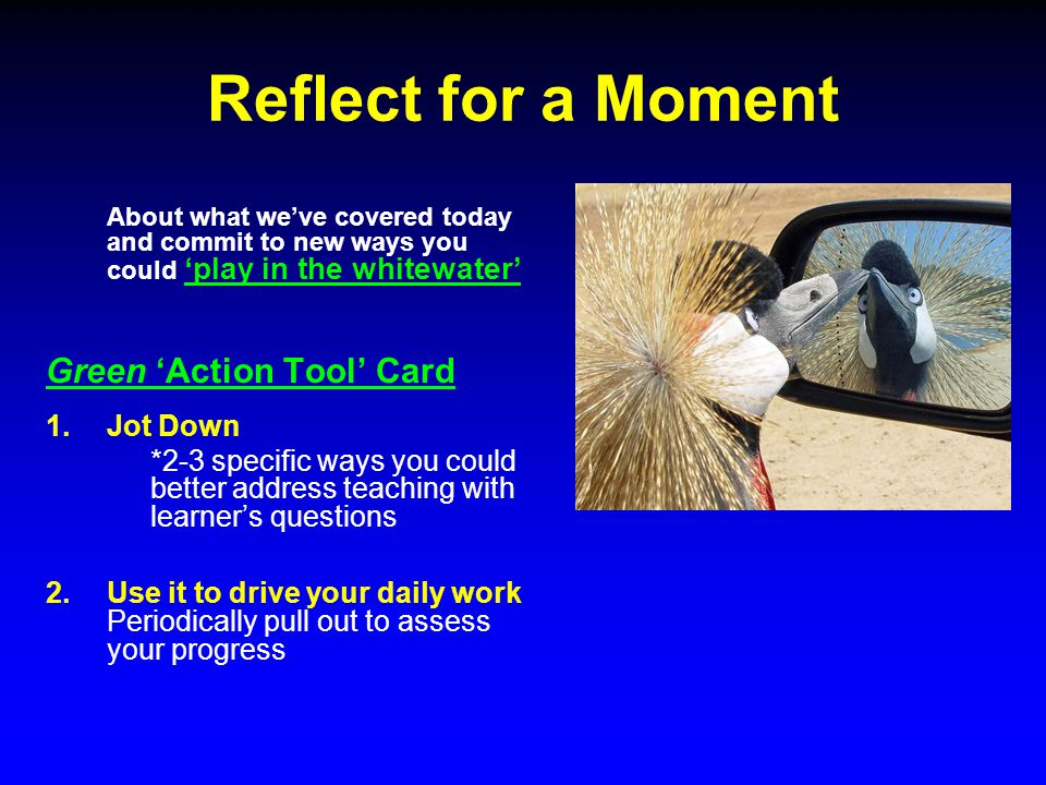 Reflect for a Moment About what we've covered today and commit to new ways you could 'play in the whitewater' Green 'Action Tool' Card 1.Jot Down *2-3 specific ways you could better address teaching with learner's questions 2.Use it to drive your daily work Periodically pull out to assess your progress