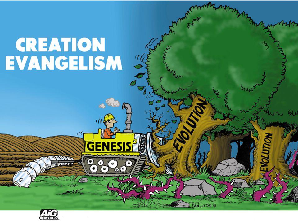 Bulldozer – Creation Evangelism