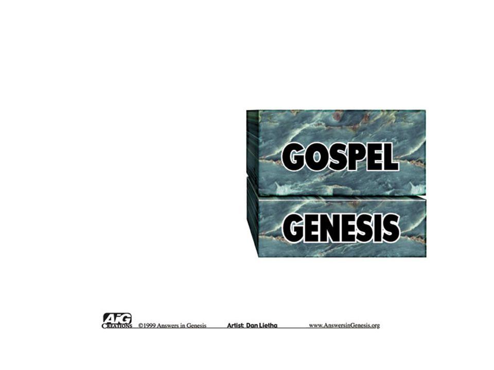 Blocks – Gospel/Genesis